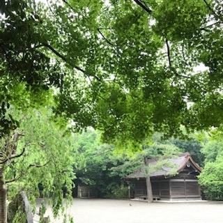 f:id:kou_shinsekairoute:20190604012232j:plain