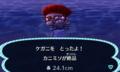 さんめとこ村長の誕生日には蟹が合うかな