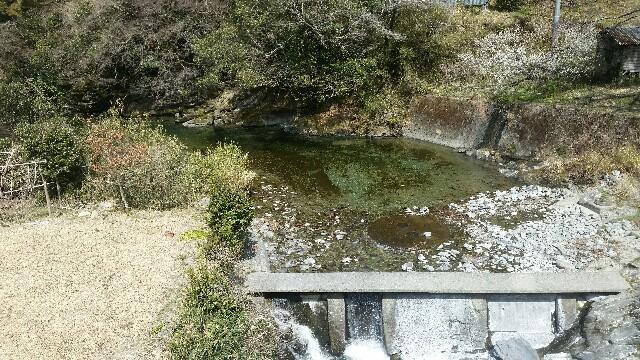 f:id:kouchi-ni-chi:20170317155428j:image