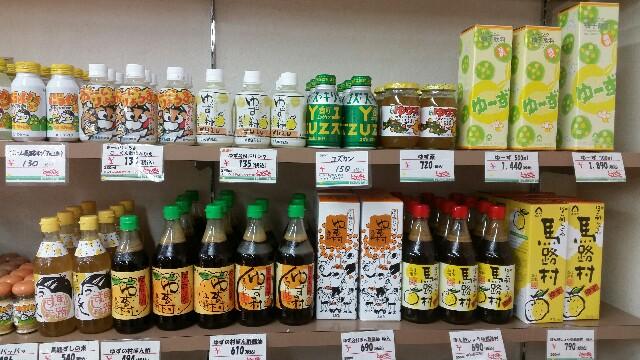 f:id:kouchi-ni-chi:20170317195434j:image
