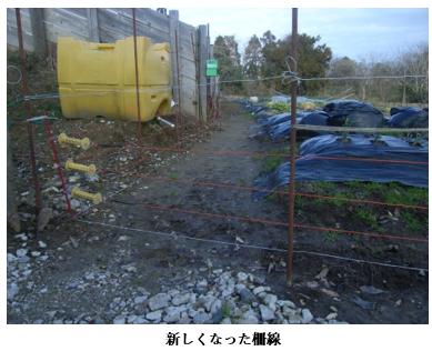 f:id:koufuku-kyouden:20210308110750p:plain