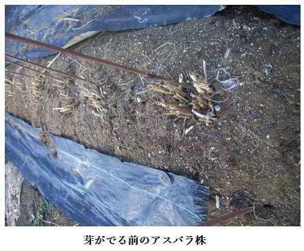 f:id:koufuku-kyouden:20210316152809p:plain