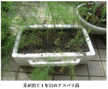 f:id:koufuku-kyouden:20210421143207p:plain