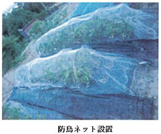 f:id:koufuku-kyouden:20210430092546p:plain
