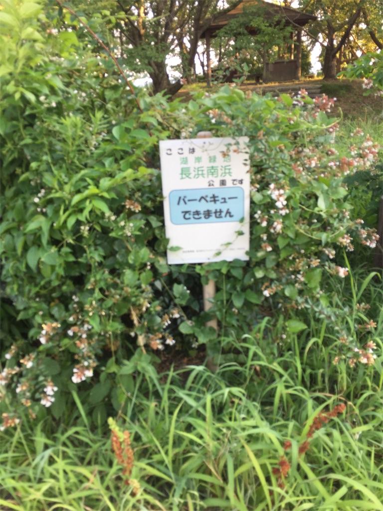 f:id:kougagennosuke:20190811002616j:image