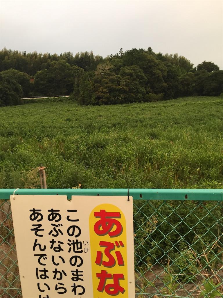 f:id:kougagennosuke:20201104185146j:image