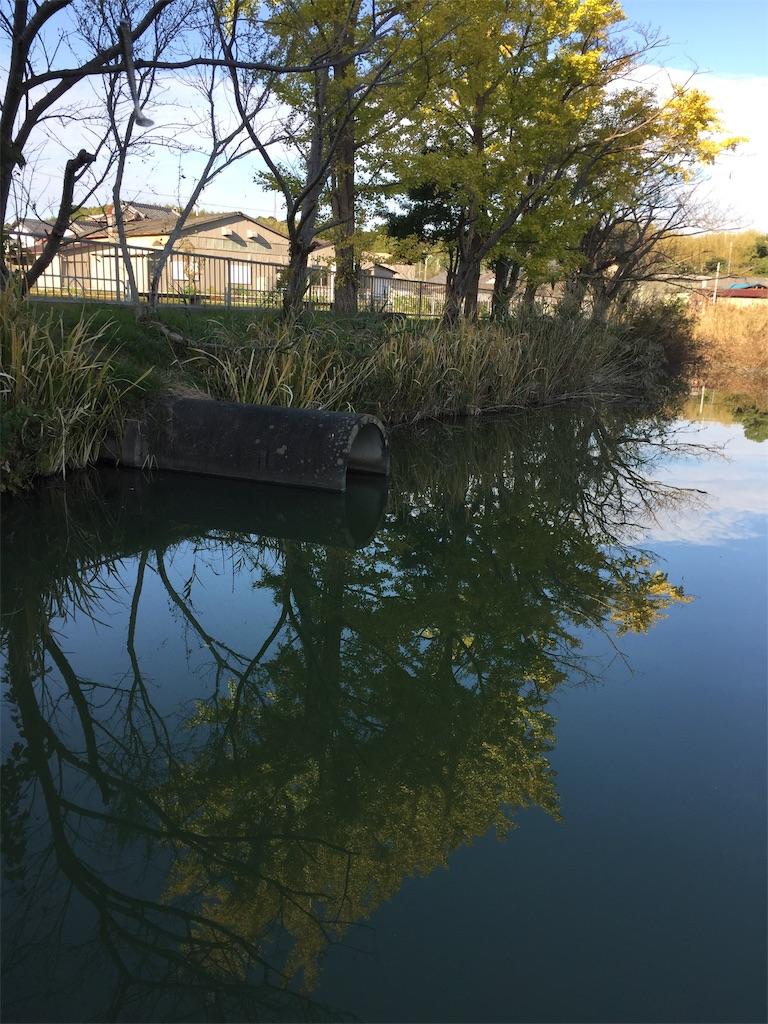 f:id:kougagennosuke:20201106192726j:image