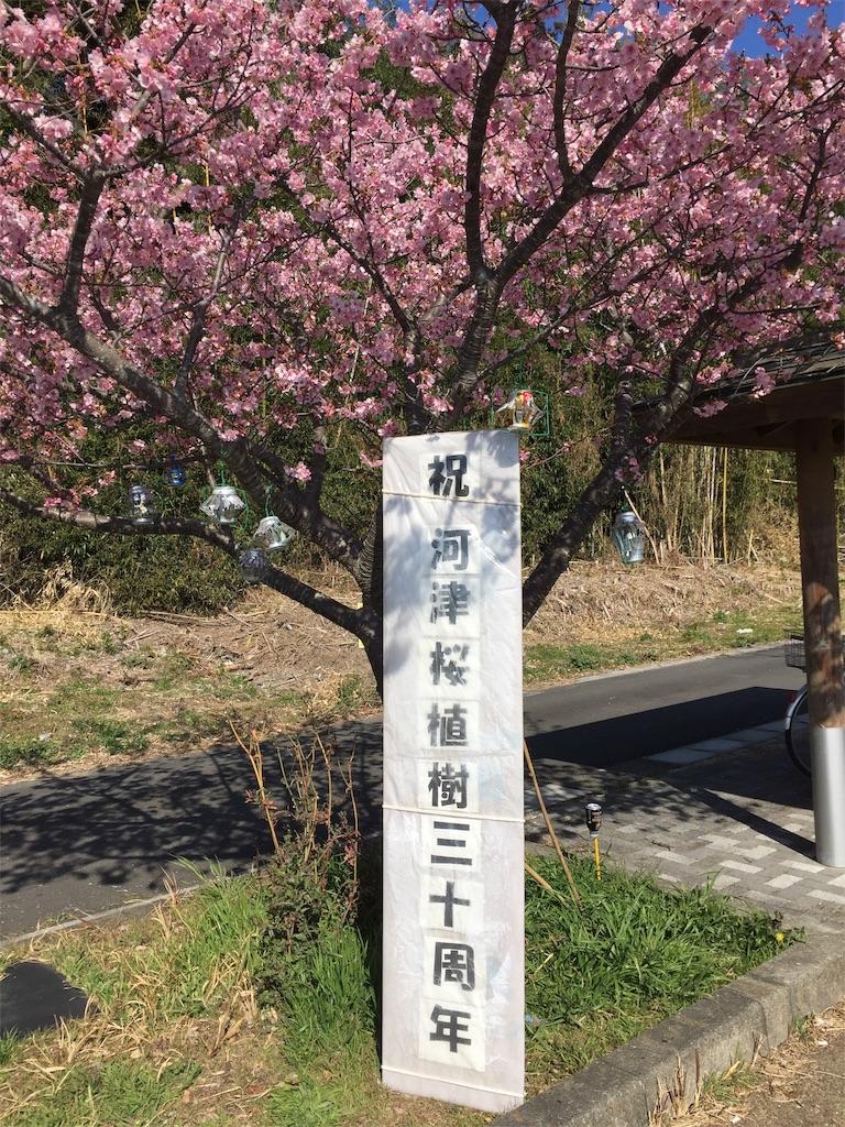 f:id:kougagennosuke:20210220190940j:image