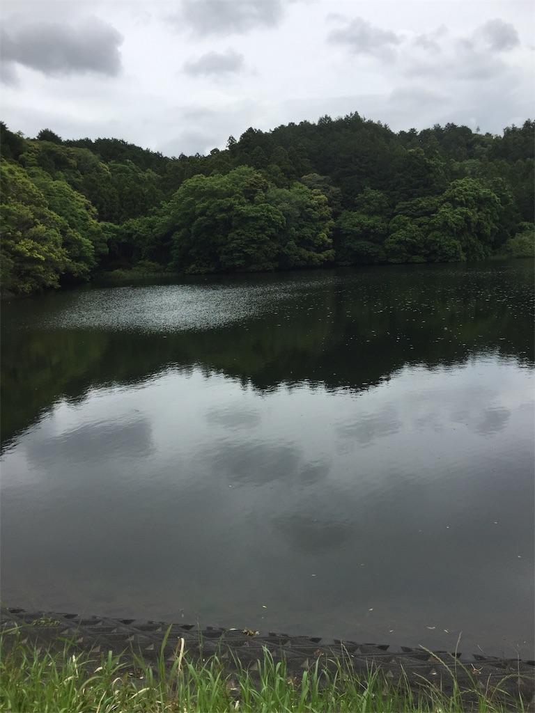 f:id:kougagennosuke:20210505164050j:image