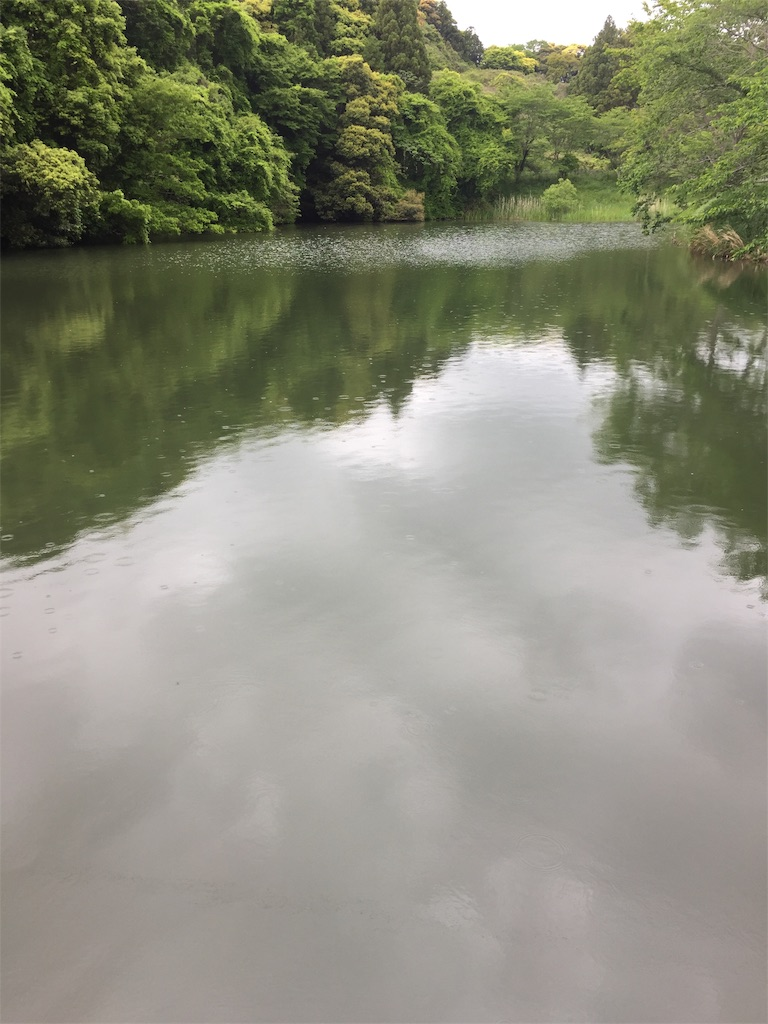 f:id:kougagennosuke:20210505164333j:image