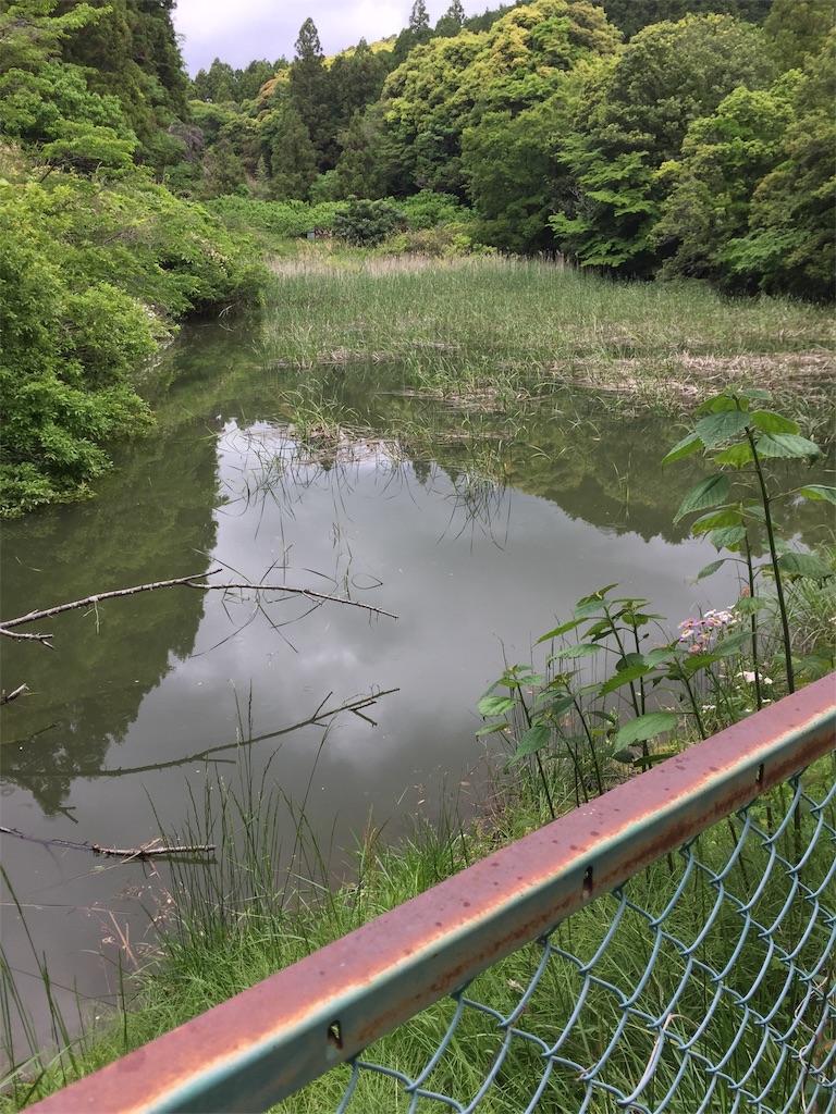 f:id:kougagennosuke:20210505164438j:image