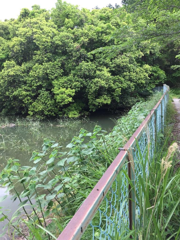 f:id:kougagennosuke:20210505164453j:image