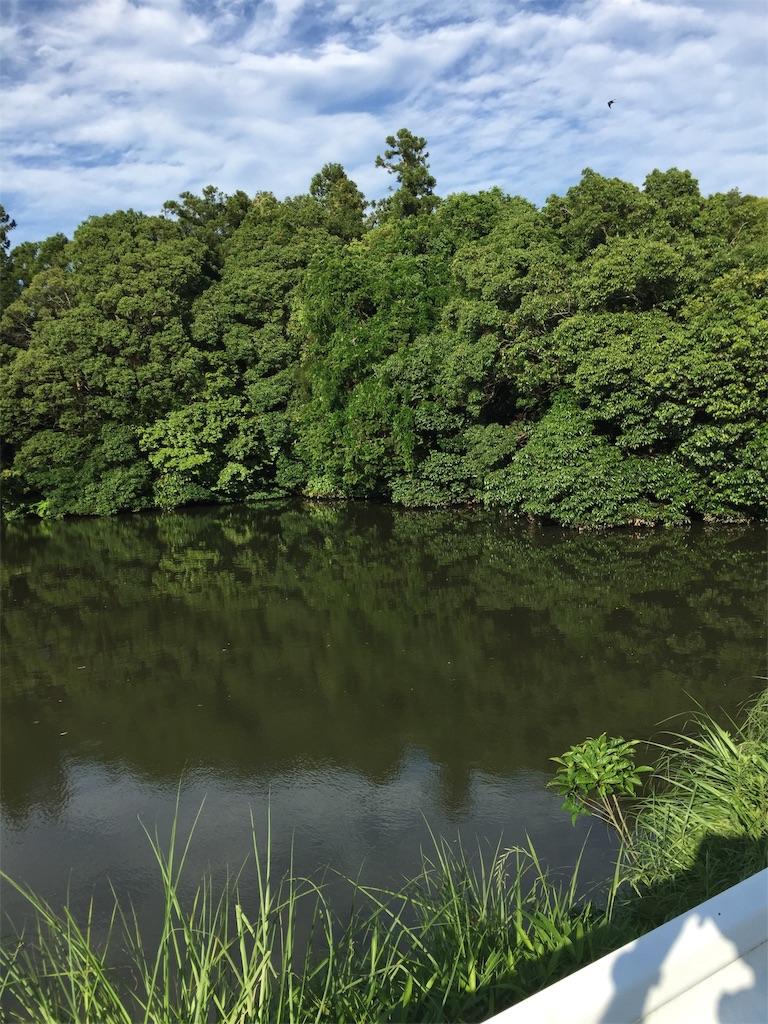 f:id:kougagennosuke:20210523214611j:image