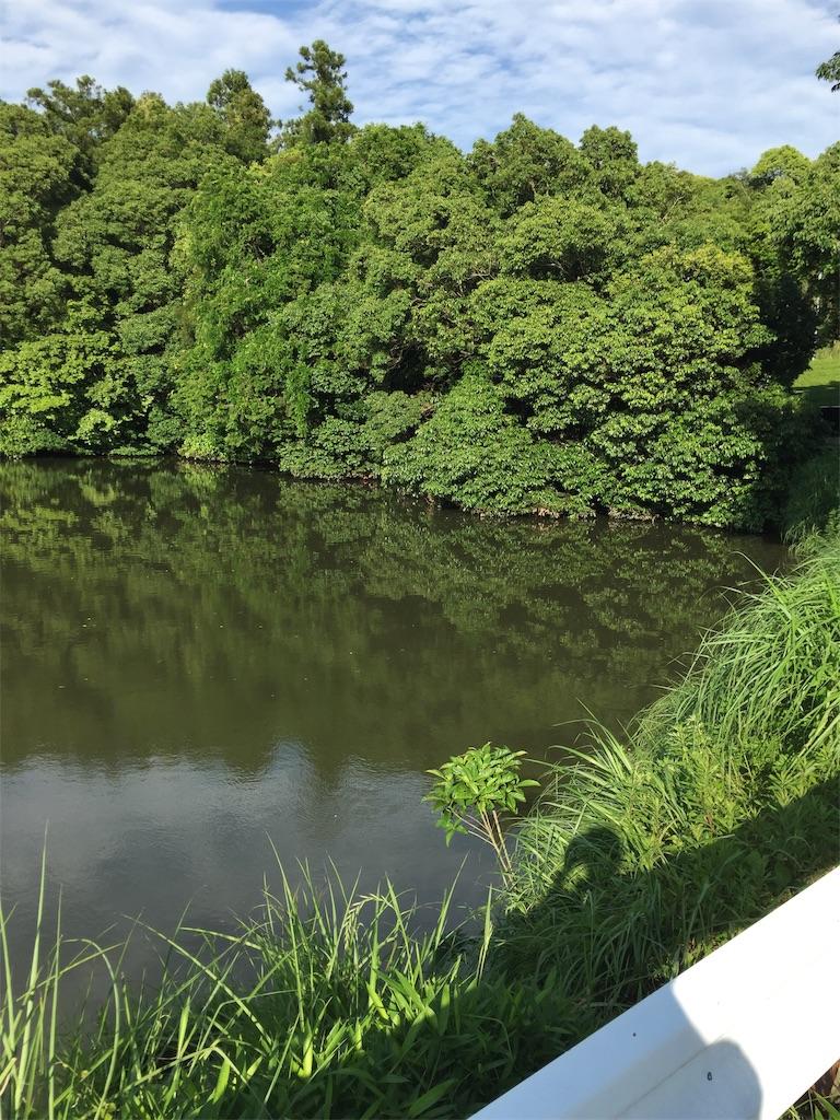 f:id:kougagennosuke:20210523214624j:image