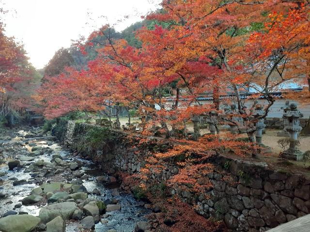 f:id:kouheibasi:20191124151009j:image