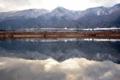 「京都新聞写真コンテスト」雪化粧