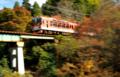 「京都新聞写真コンテスト」紅葉のトンネル