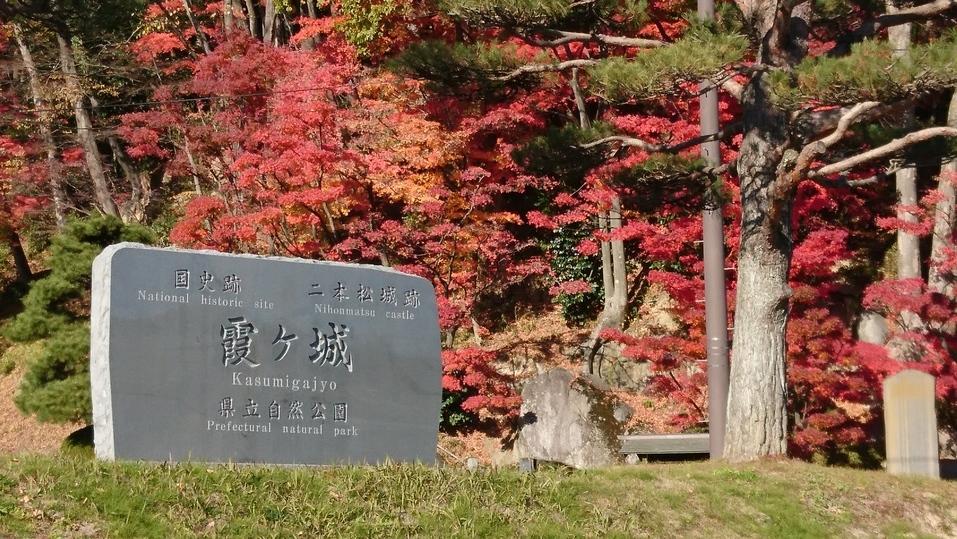 f:id:kouji-katayanagi:20181206163753j:plain