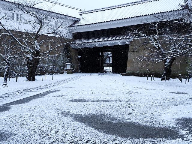 f:id:kouji-katayanagi:20181208143506j:plain