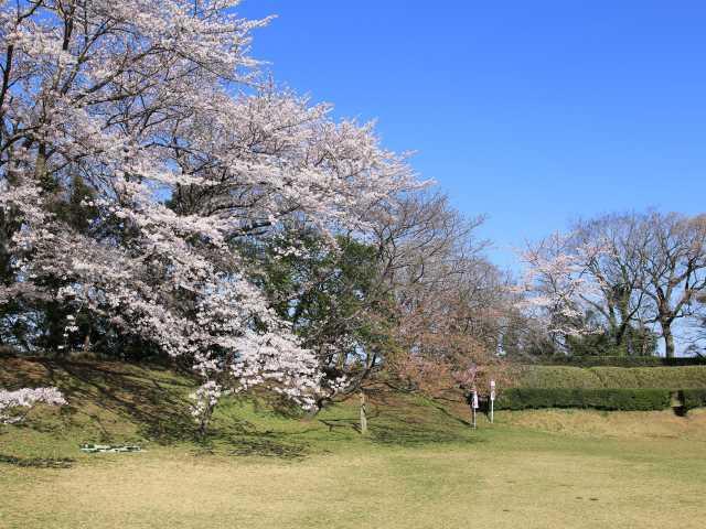f:id:kouji-katayanagi:20181225131404j:plain