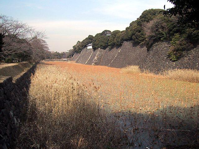 f:id:kouji-katayanagi:20181226163424j:plain