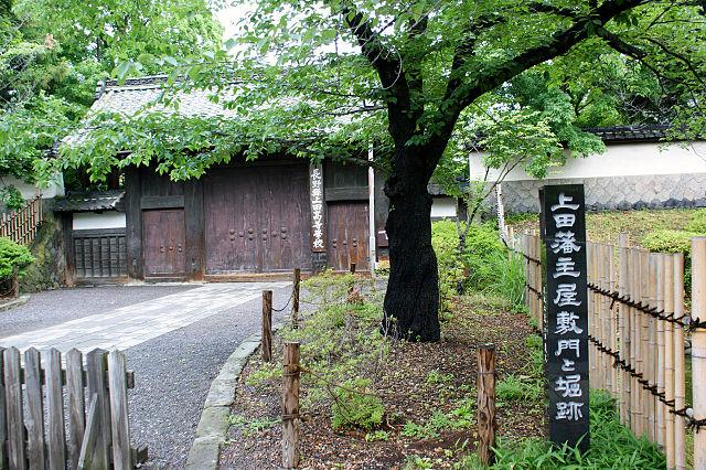 f:id:kouji-katayanagi:20190105221605j:plain
