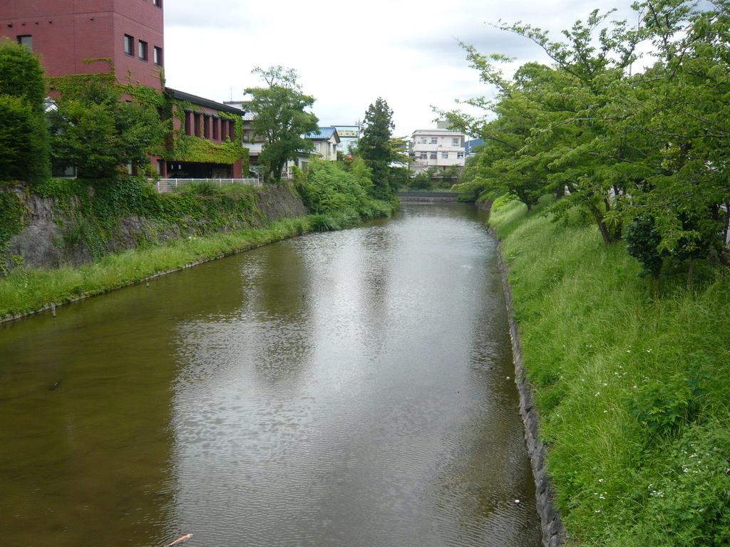 f:id:kouji-katayanagi:20190111000927j:plain