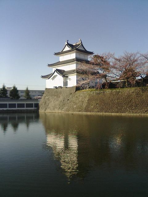 f:id:kouji-katayanagi:20190113224615j:plain