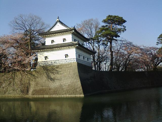 f:id:kouji-katayanagi:20190113224640j:plain