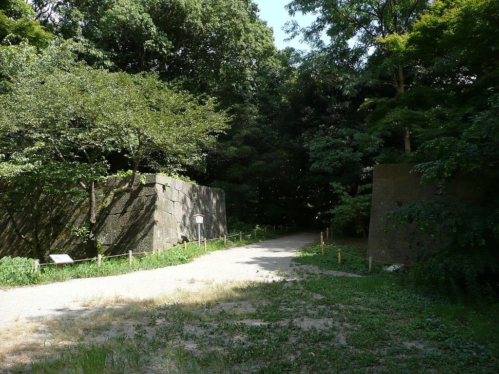 f:id:kouji-katayanagi:20190119133107j:plain
