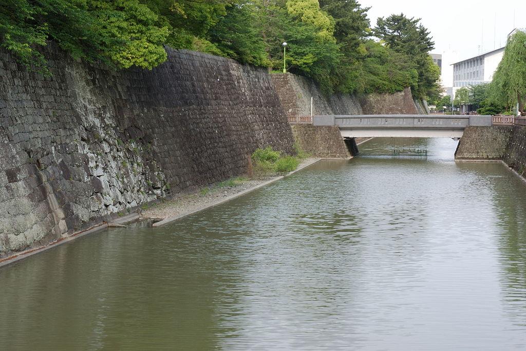 f:id:kouji-katayanagi:20190202225021j:plain