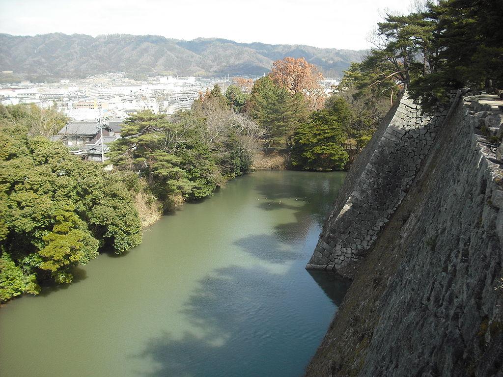 f:id:kouji-katayanagi:20190212155214j:plain