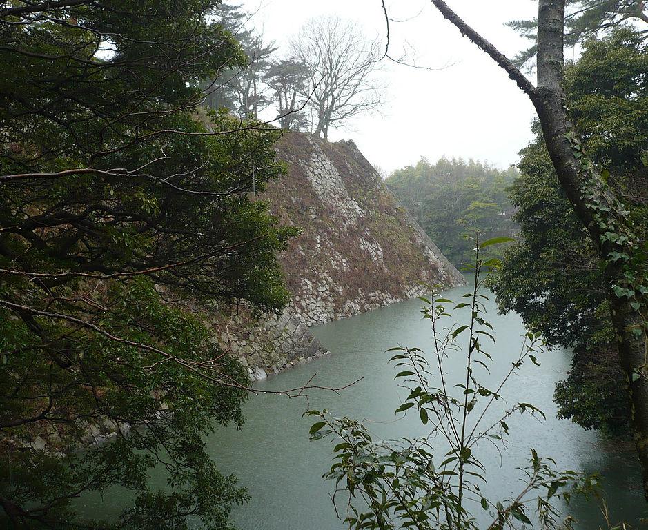 f:id:kouji-katayanagi:20190212155235j:plain