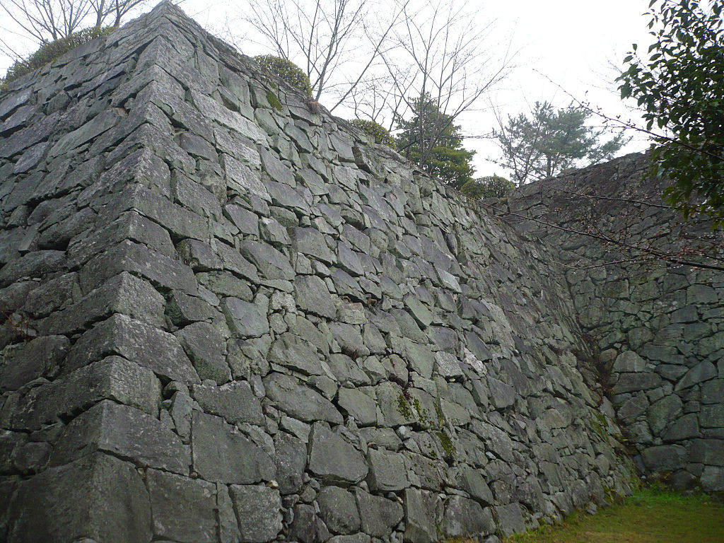 f:id:kouji-katayanagi:20190212155329j:plain