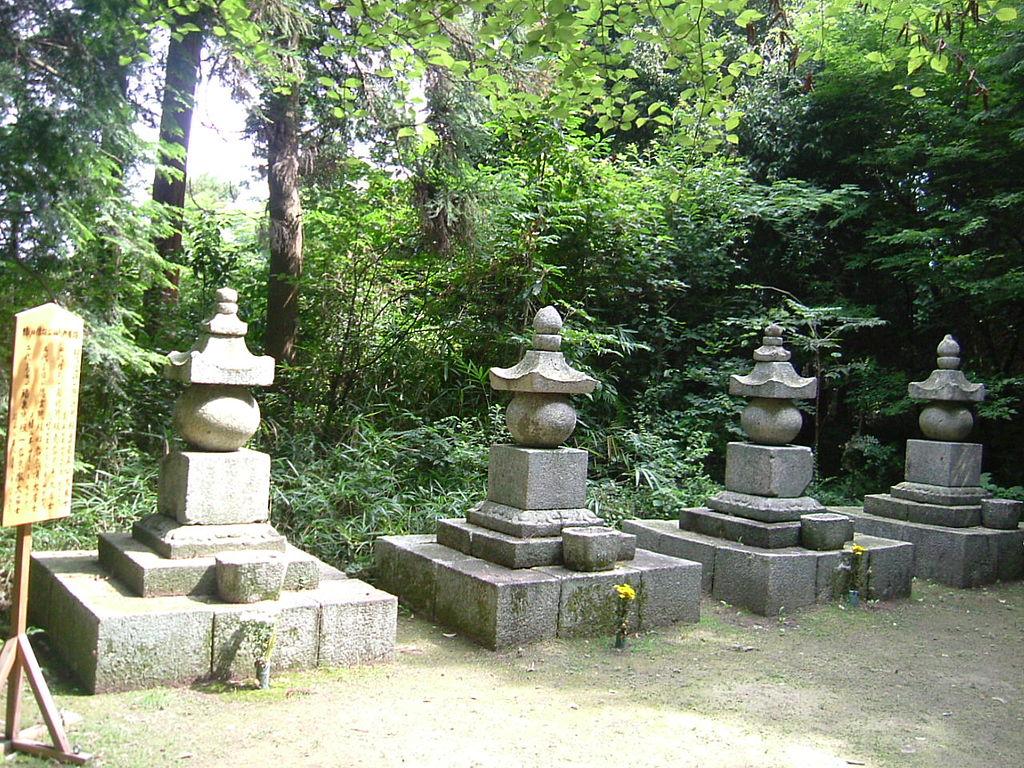 f:id:kouji-katayanagi:20190220112146j:plain
