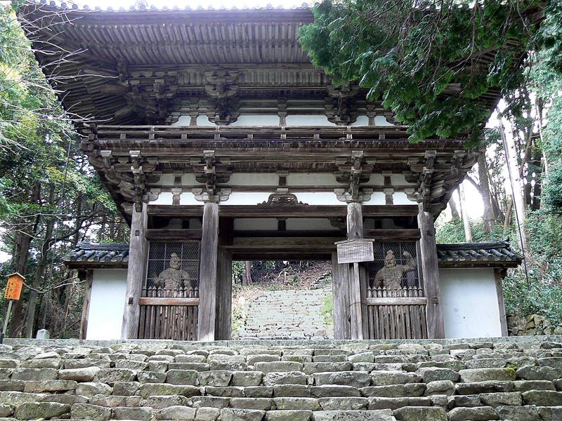 f:id:kouji-katayanagi:20190220112401j:plain