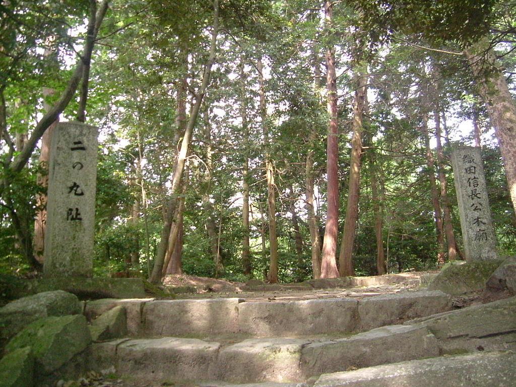 f:id:kouji-katayanagi:20190220112453j:plain