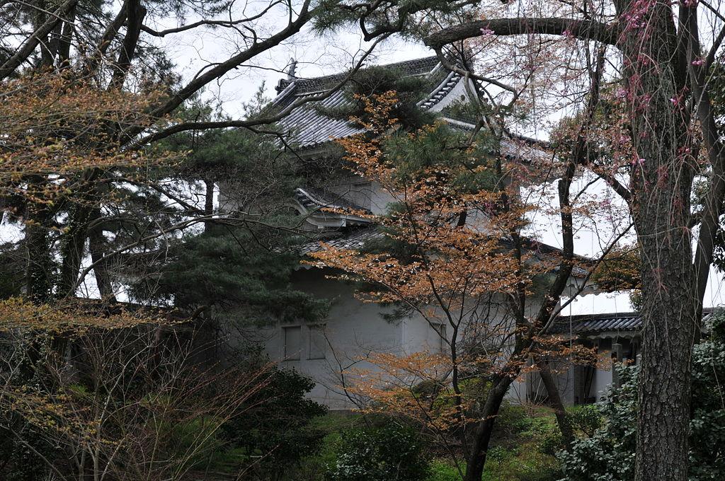 f:id:kouji-katayanagi:20190224001006j:plain
