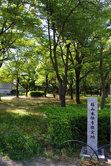 f:id:kouji-katayanagi:20190224184824j:plain