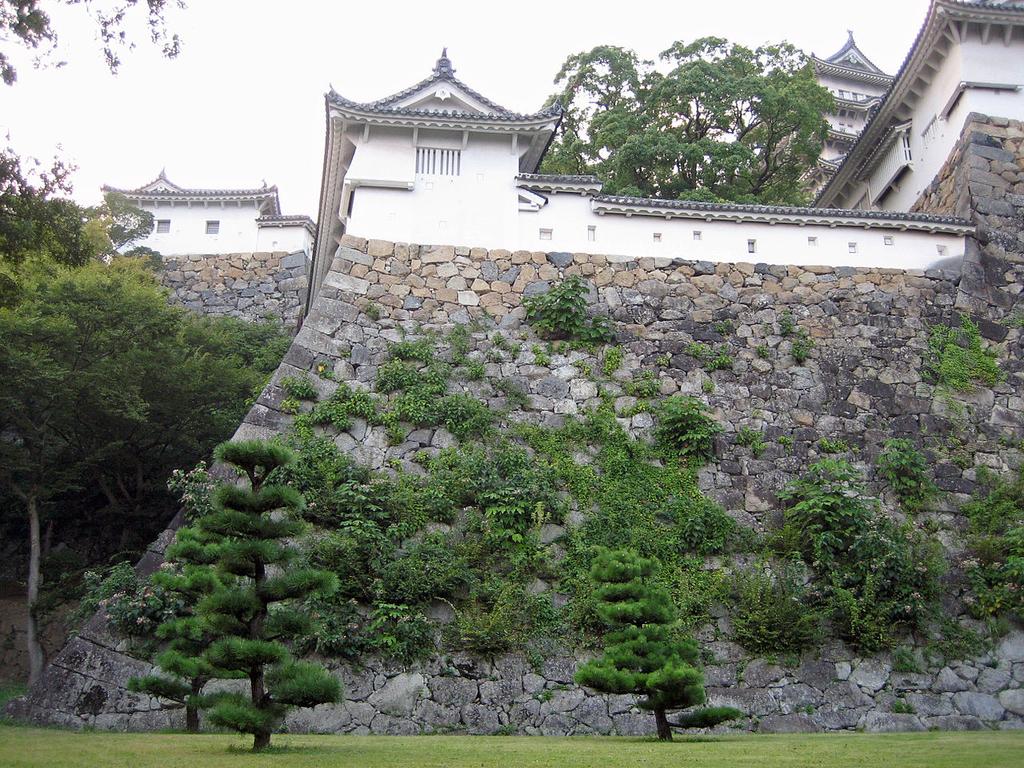 f:id:kouji-katayanagi:20190305023747j:plain