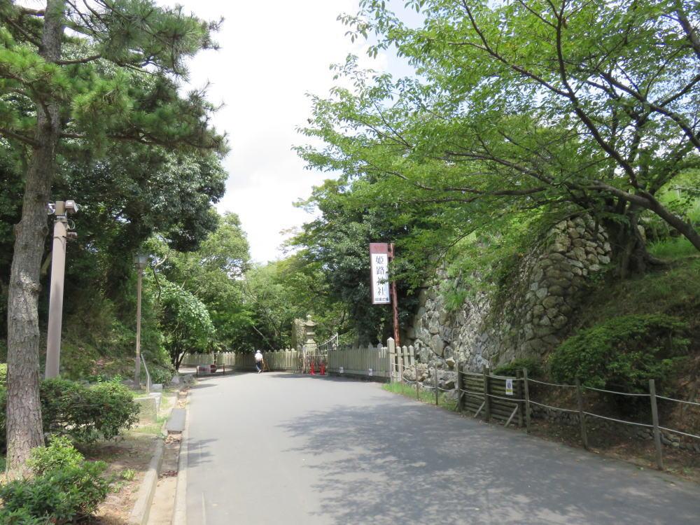 f:id:kouji-katayanagi:20190307151341j:plain