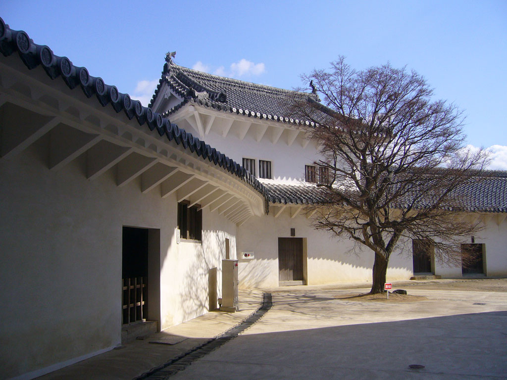 f:id:kouji-katayanagi:20190307151546j:plain