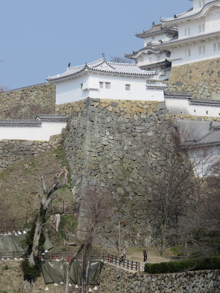 f:id:kouji-katayanagi:20190307151956j:plain