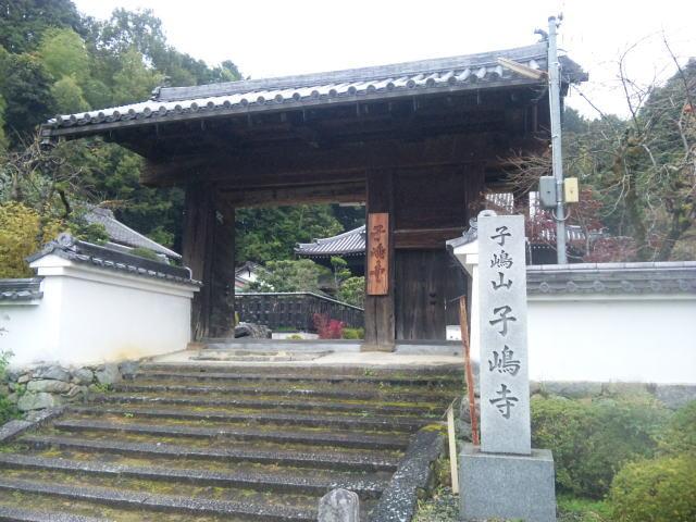 f:id:kouji-katayanagi:20190310225806j:plain