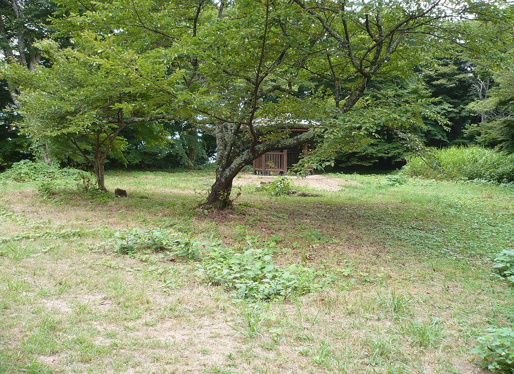 f:id:kouji-katayanagi:20190310231708j:plain