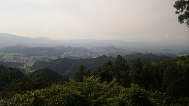 f:id:kouji-katayanagi:20190310231809j:plain