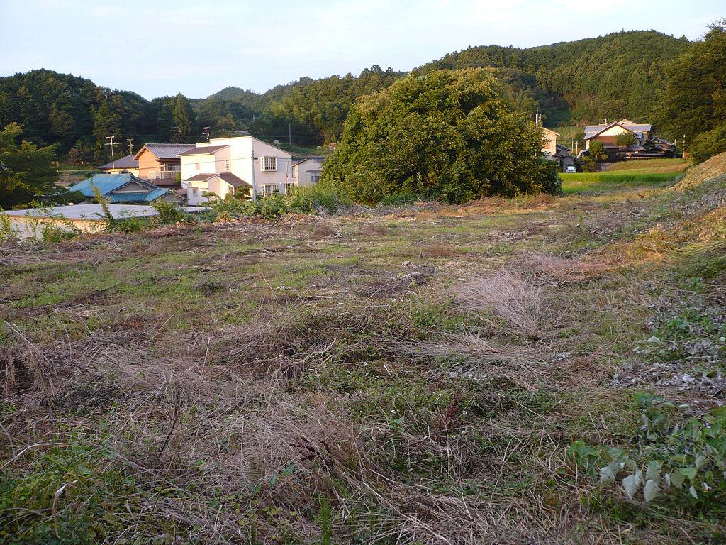 f:id:kouji-katayanagi:20190310231944j:plain