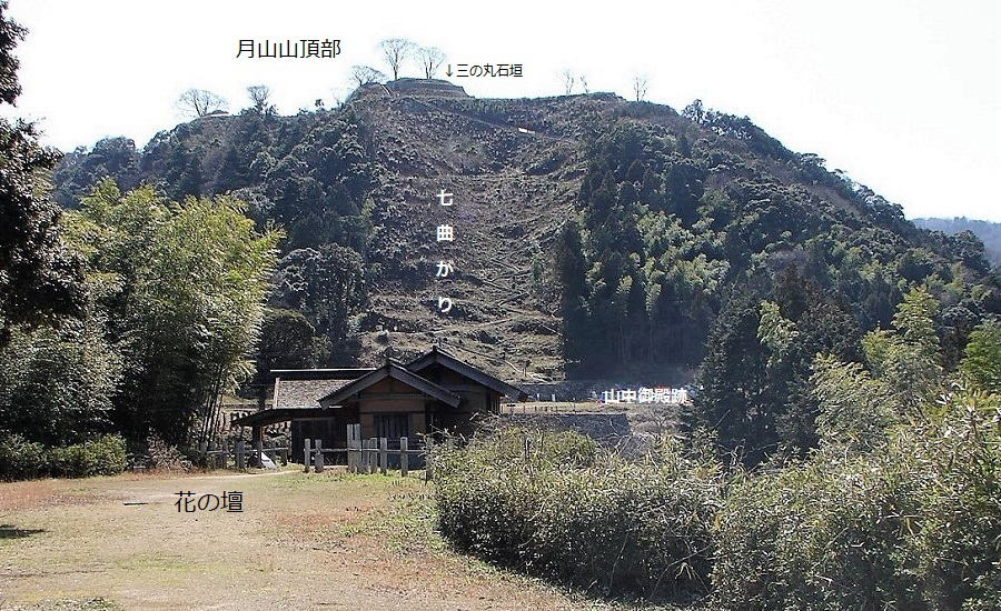 f:id:kouji-katayanagi:20190319211057j:plain