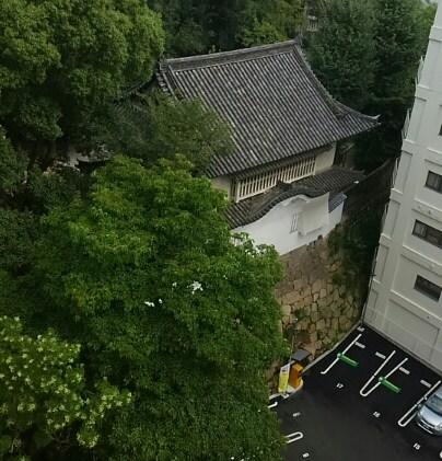 f:id:kouji-katayanagi:20190328182437j:plain