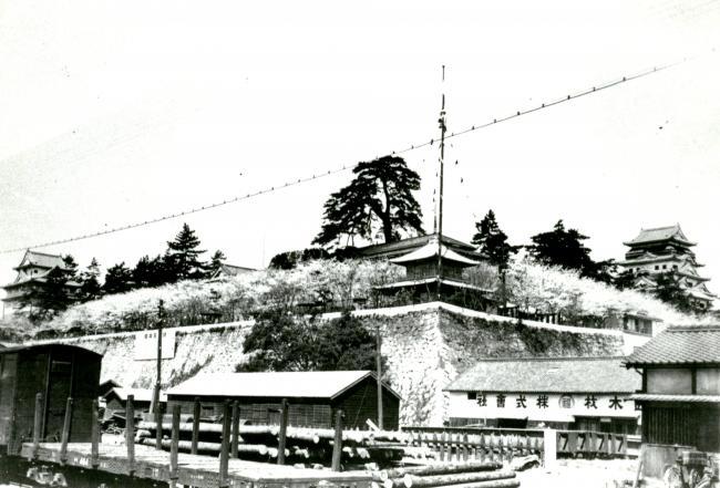 f:id:kouji-katayanagi:20190331193445j:plain